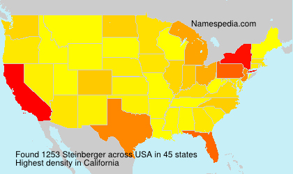 Surname Steinberger in USA