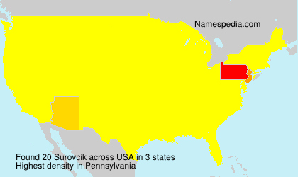 Surname Surovcik in USA