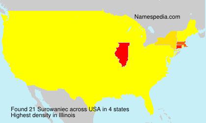 Surowaniec - USA
