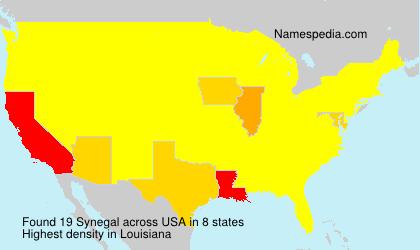 Synegal - USA
