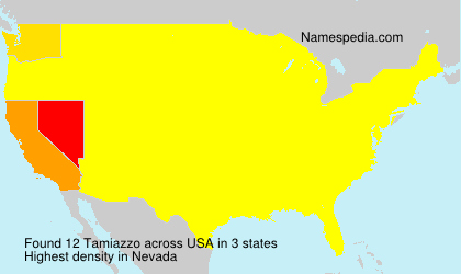 Surname Tamiazzo in USA