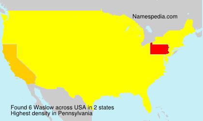 Familiennamen Waslow - USA