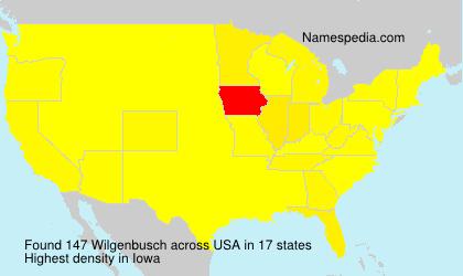 Wilgenbusch