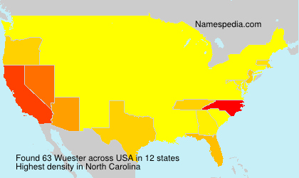 Surname Wuester in USA